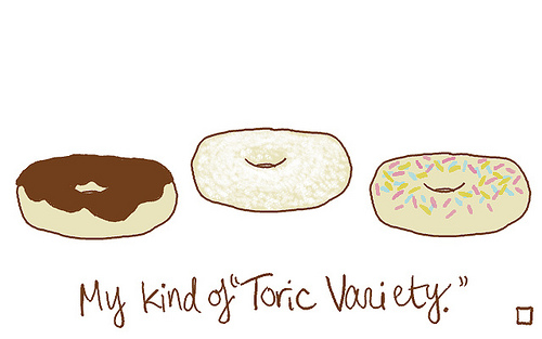 My kind of Toric Variety